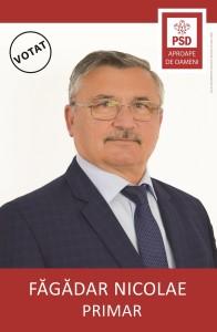 FĂGĂDAR NICOLAE 100