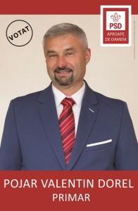POJAR VALENTIN DOREL 150
