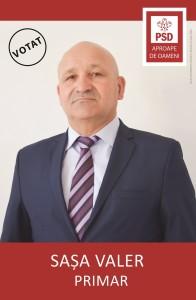 SAȘA VALER 300